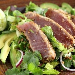 Sesame Seared Ahi - Tuna Salad served atop a bed of greens, lightly ...