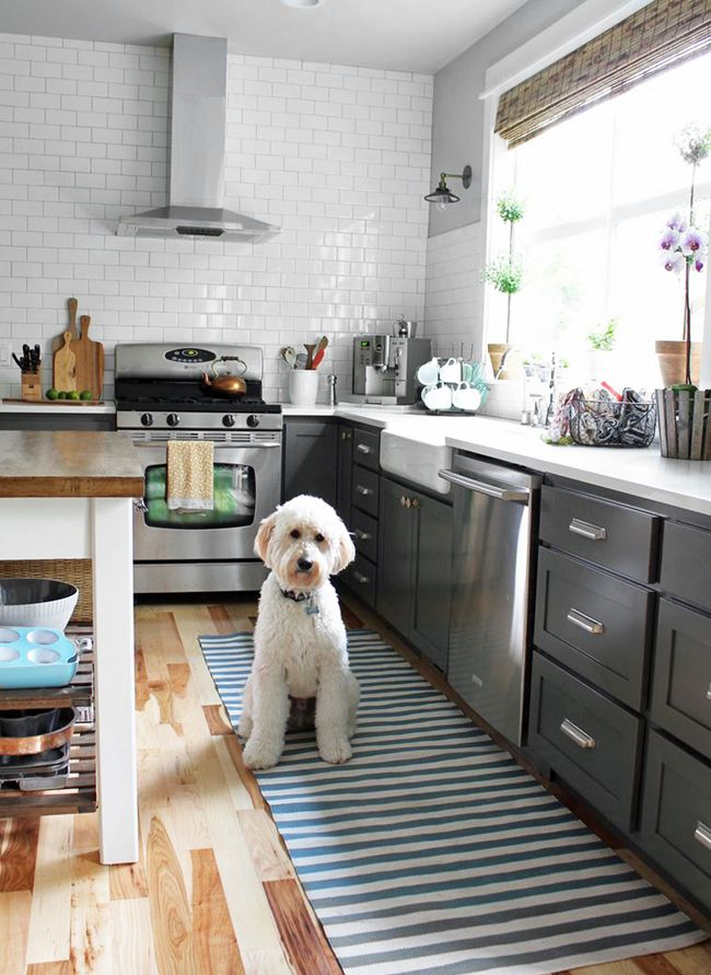 Charcoal and white kitchen with dash & albert rug and a goldendoodle