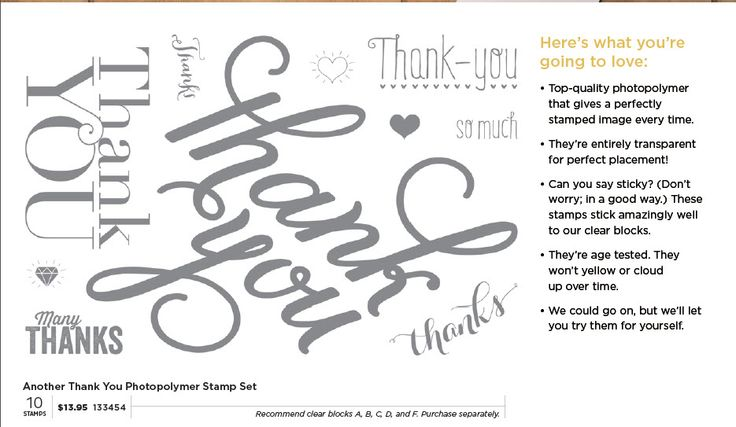 Another Thank You Photopolymer Stamp Set From Stampin' Up!