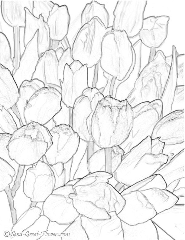 hard coloring pages print each saved tulip coloring page