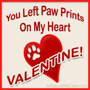 nashville valentine's day singles