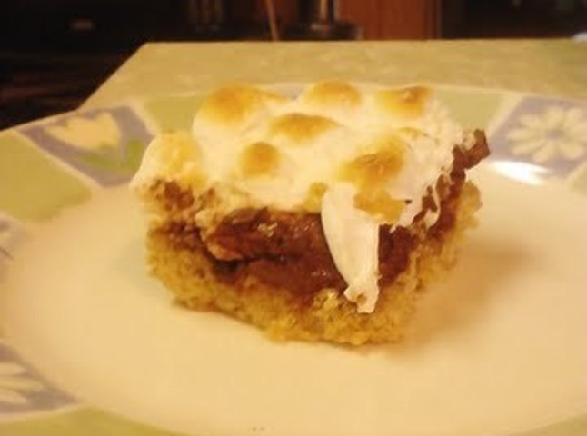 Gooey Toasted S'mores Bars This recipe is really easy and so tasty. A ...