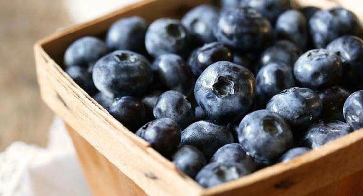 Dessert Tamale with Blueberry Cardamom Sauce | Recipe