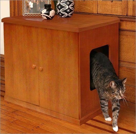 Pet-Friendly Decorating -- Hidden Litter Box