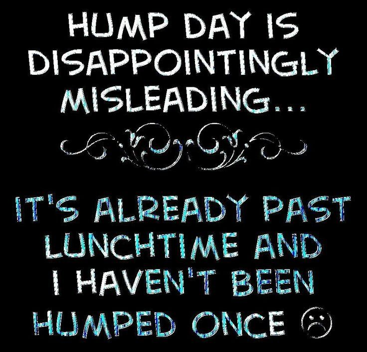 Hump Day Quotes Quote Funny Days The Week Humor Wednesday