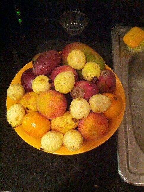 Nn My Fruits
