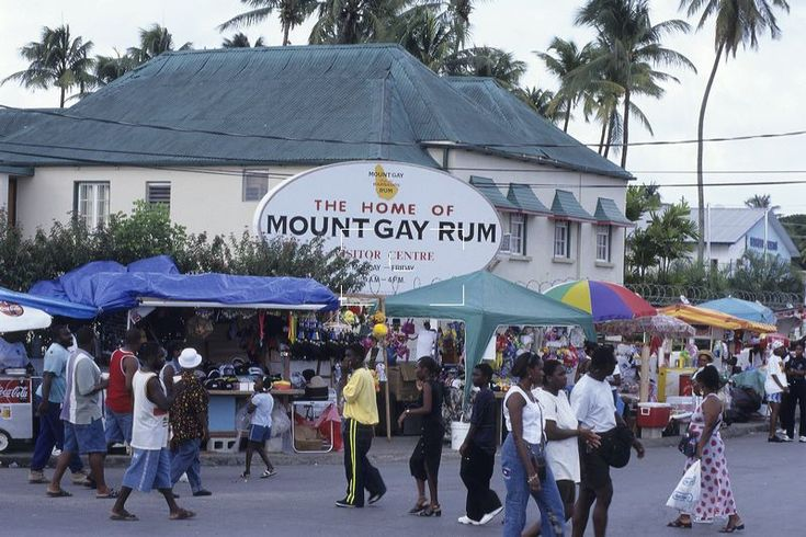 from Vincenzo mount gay barbados