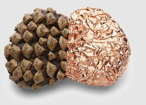 Iris Bodemer brooch -'ingredients' - copper, pine cone scales, 2008