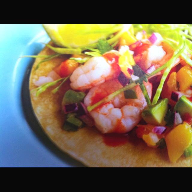 ... salsa shrimp in salsa mango salsa shrimp with avocado mango salsa