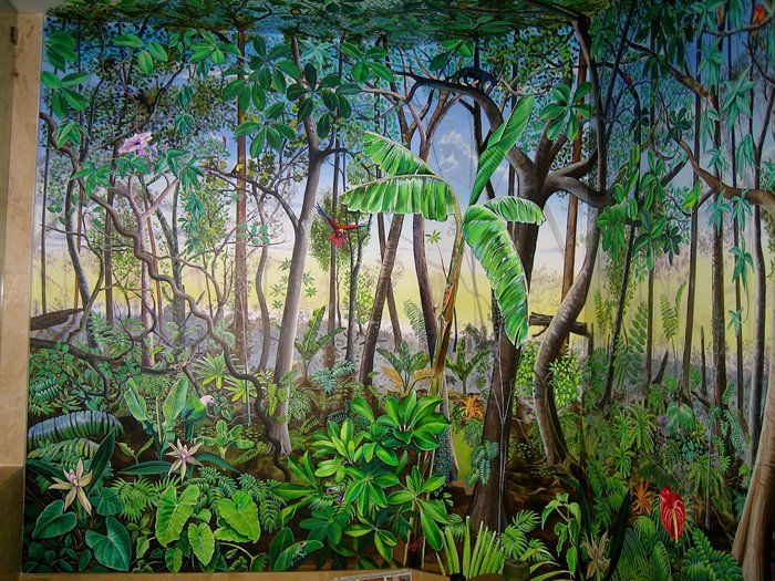 Rain forest mural by damien share montessori ideas for Rainforest decorations