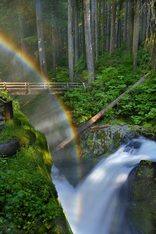 Rainbow Over Sol Duc Falls Print by Jim Lundgren