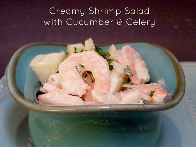 Creamy Shrimp Salad with Cucumber and Celery - Healthy recipe that is ...