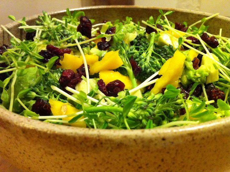 ... .com/creamy-cranberry-broccolini-salad/ #raw #vegan #salad #recipe
