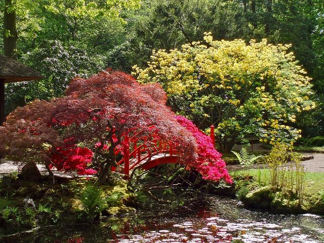 Japanese garden by Frans Schmit (break),
