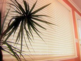 How to Clean Blinds : Decorating : Home & Garden Television