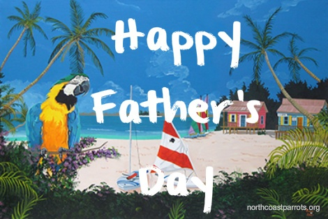 father's day in north america