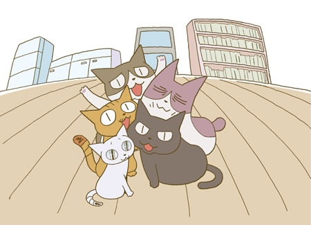 I love these cats.