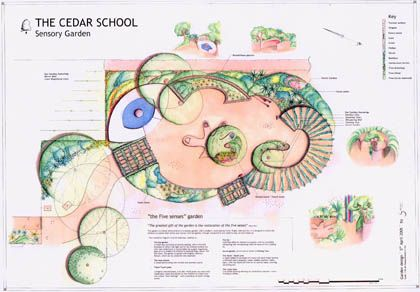 Cedar School Sensory Garden initial plan Sensory garden