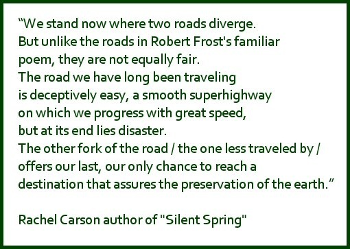 silent spring rachel carson Today marks the 50th anniversary of one of the darkest, most disturbing books  ever published: rachel carson's silent spring by extension.