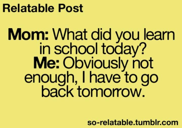 Learning in school | Funny | Pinterest