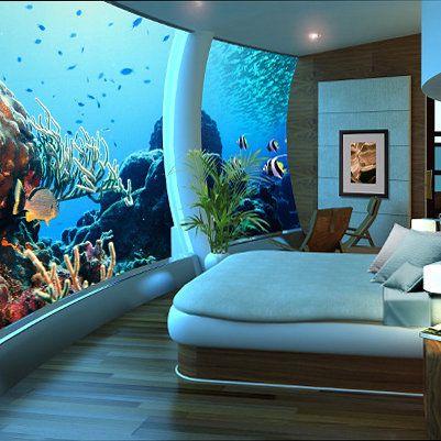 Aquarium Bedroom Addictions Pinterest