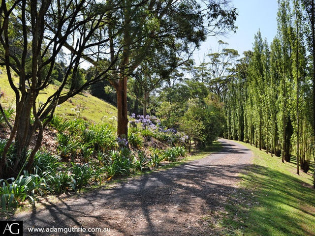 Sloping site ideas garden pinterest for Garden design ideas sloping site