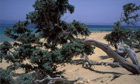 Gavdos Island Greece