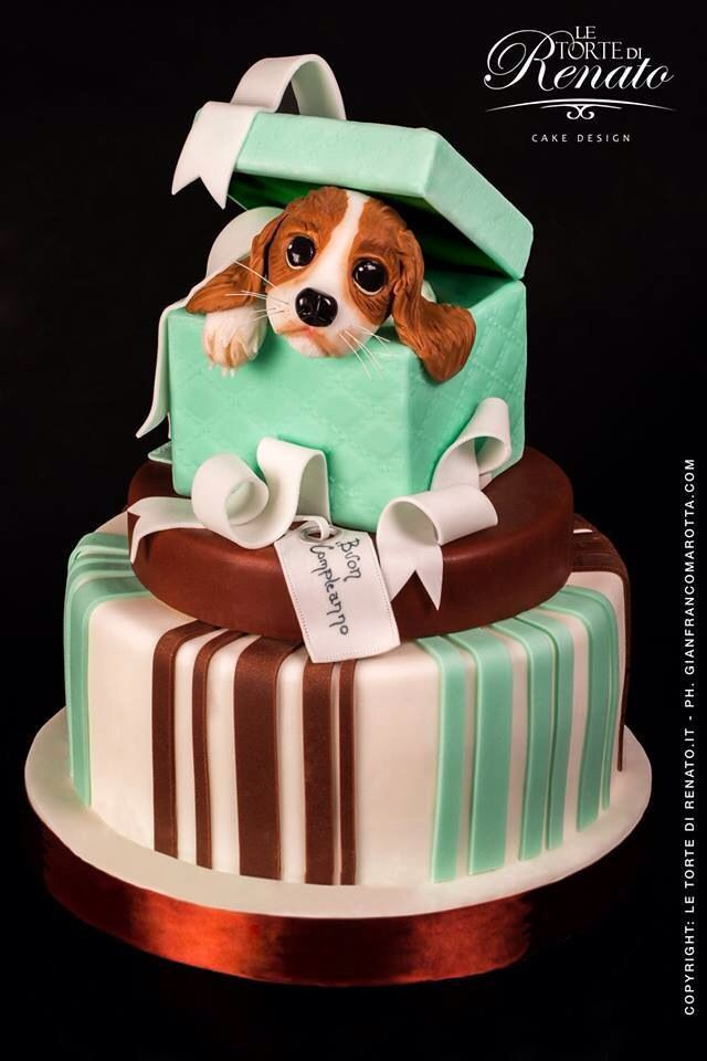 Dog in gift box Amazing cakes Pinterest