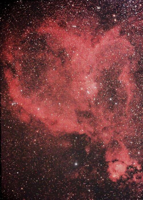 the by nebula heart mattwey - photo #13