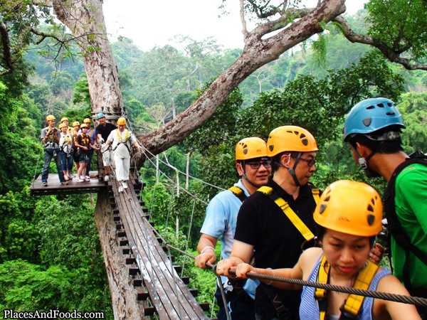 Flight of the Gibbon, Pattaya Thailand  Travel Pictures ...