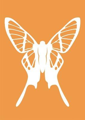 butterfly_03