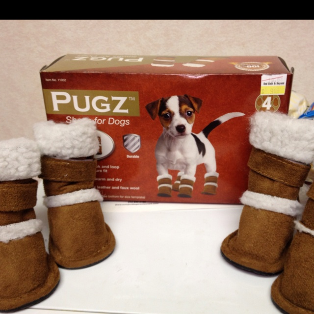 Shoes for dogs!!! not an ugg girl but my babies would be cute in these