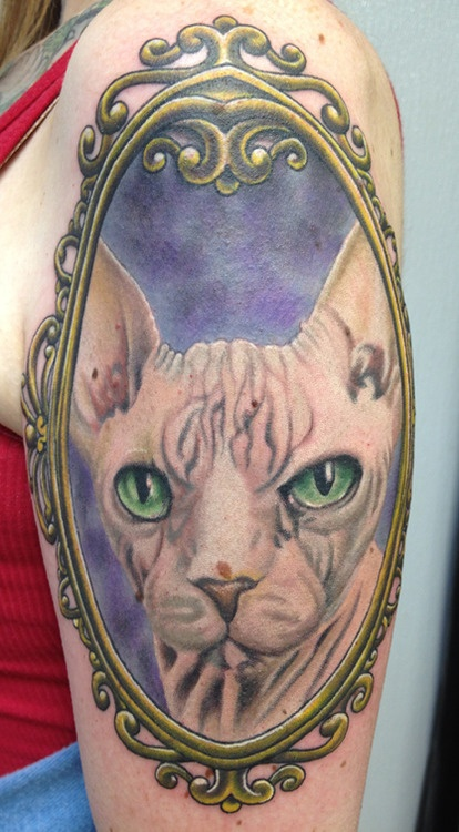 Hairless cat tattoo i like pinterest for Hairless cats with tattoos