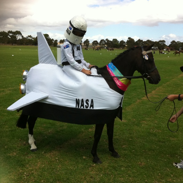 how to make a ride a horse costume