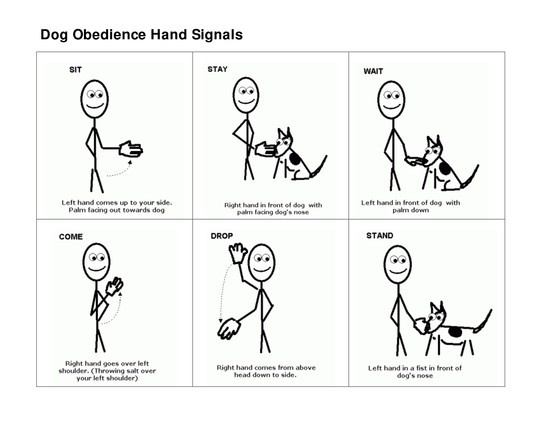 Dog Obedience Hand Signals | Pet Training | Pinterest