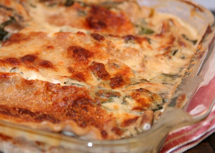 lasagna mushroom lasagna mushroom lasagna mushroom lasagna creamy ...
