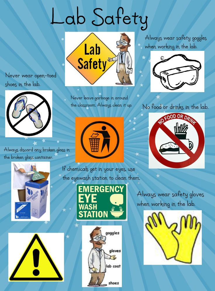 How to Remove Health Hazards from Your Backyard How to Remove Health Hazards from Your Backyard new foto