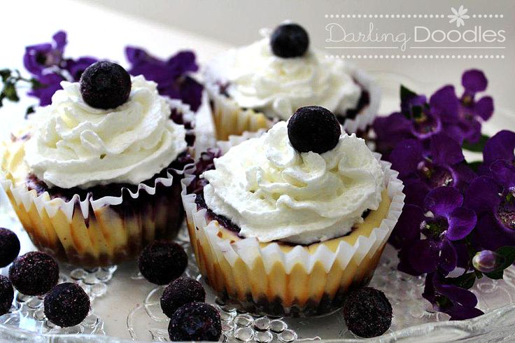 individual blueberry cheesecakes... i simply must make these soonish ...