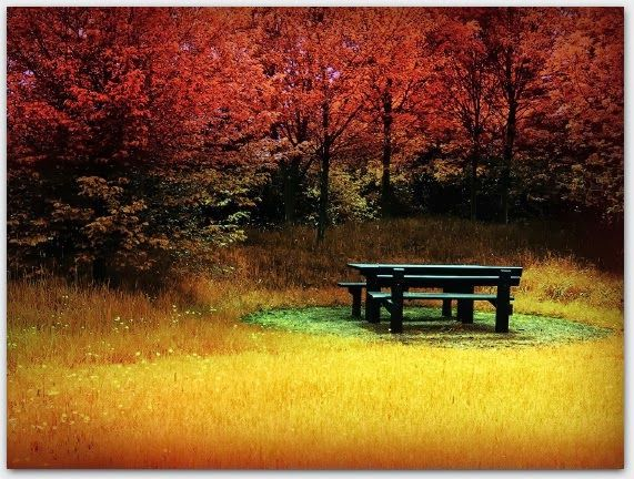 Autumn | Seasons - A Chill Breeze and Autumn Leaves | Pinterest