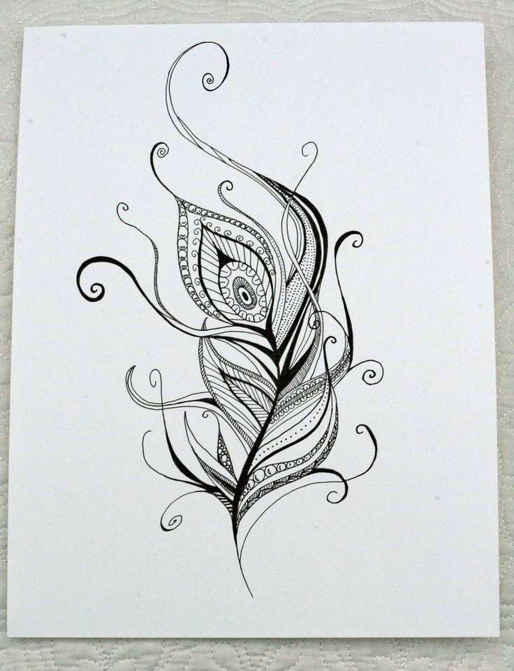Peacock feather drawing tattoo - photo#15