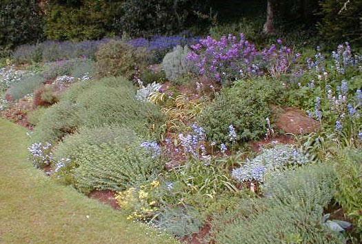 Réaliser une rocaille - Jardins  ART NATURE JARDINS  Pinterest