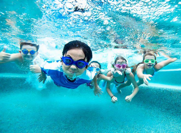 Pin by small fish big fish swim school on kids swim safety for Little fish swim school