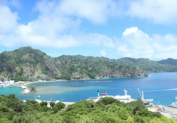 小笠原諸島の画像 p1_17