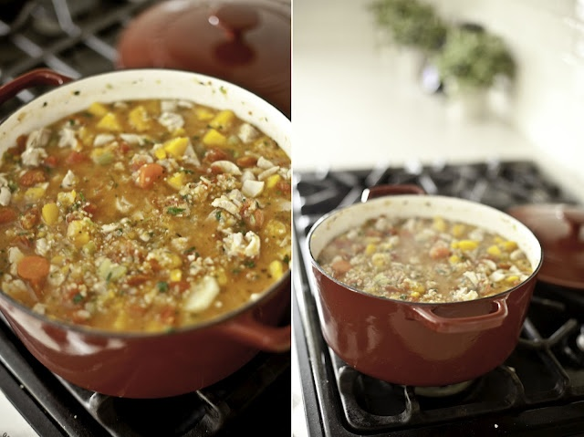 ... law made this Hearty Chicken Stew with Butternut Squash and Quinoa