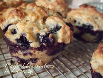 Oatmeal Blueberry Muffin Recipe - update: I made these yesterday and ...
