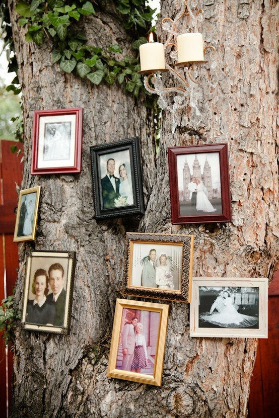 Outdoor wedding decor. Family portraits in eclectic frames on tree trunk. Rustic romance.