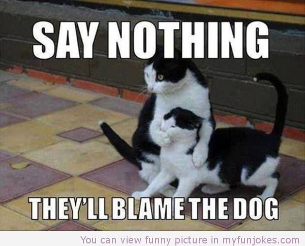 Funny Jokes Say Nothing One Liners Humor Joke