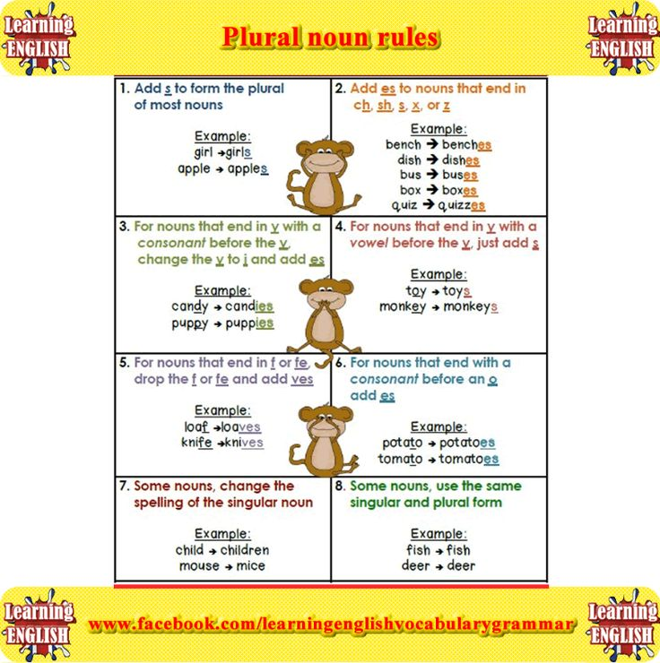 Best 25+ Plural noun examples ideas on Pinterest | Examples of ...