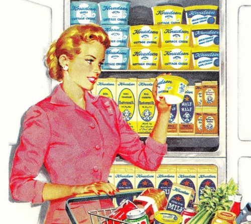 Image result for 1950s housewife