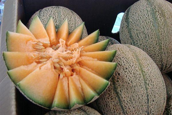 lovely rockmelon | Dreaming of a PINK Summer | Pinterest